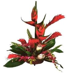 Tropical Fire Bouquet